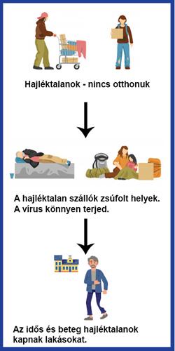 hajlektalanok_info